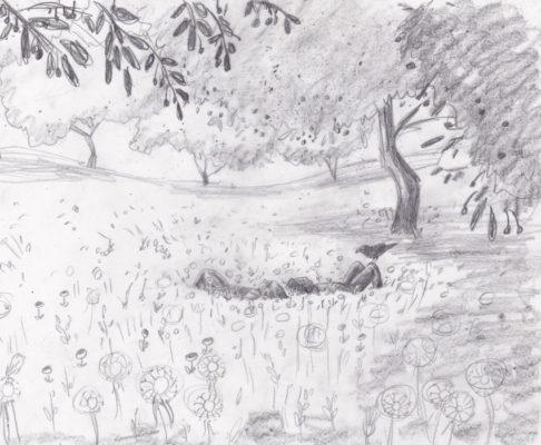 sketch 'Cherryheaven'